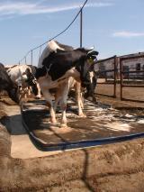 Средство защиты от агрессивных животных Контроль-АС, 65мл., струйный.