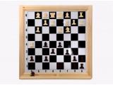 Шахматы настенные демонстрационные (Орлов)